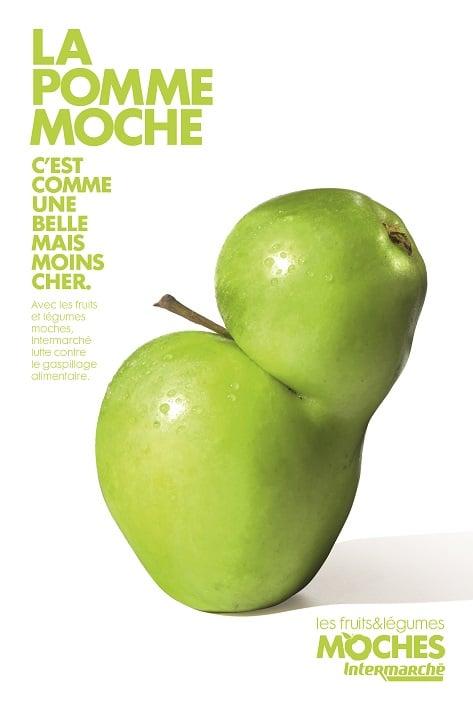 legume moche marcel agence
