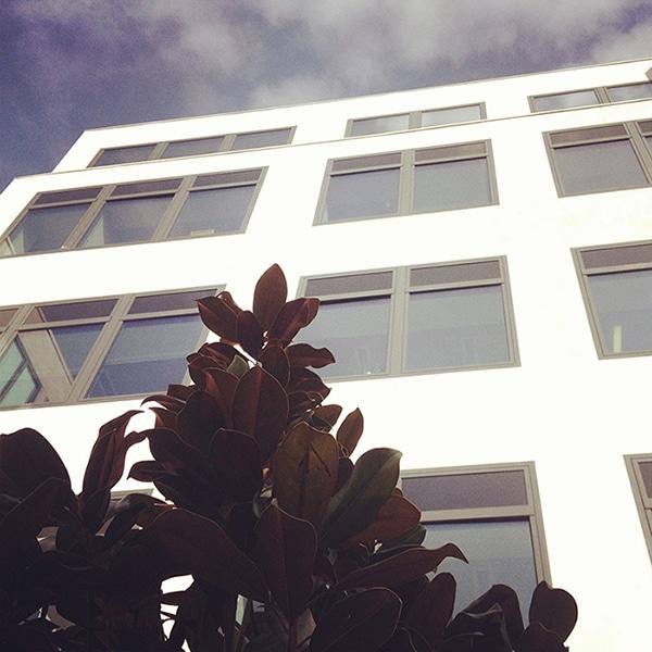 ddb-paris-bureaux-agence-publicité-locaux-adresse-73-75-rue-la-condamine-75017-paris-91